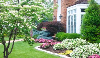 7 Easy Steps To Hire Professional Landscaping Services For Your Dream Garden