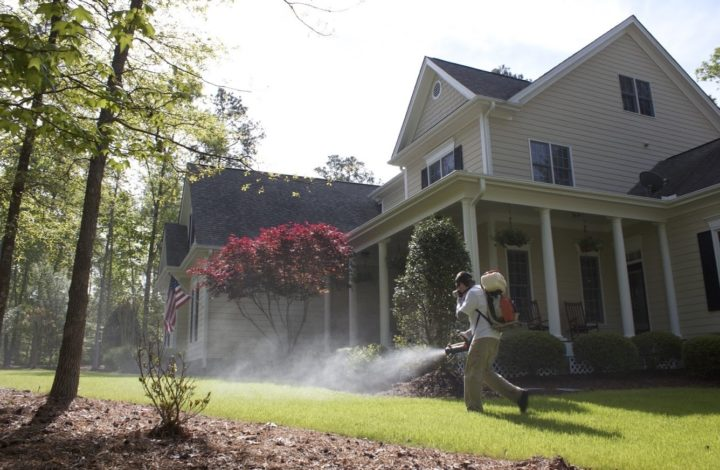 How To Keep Your House & Family Safe From Invading Pests
