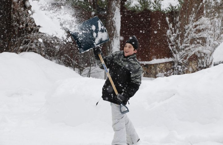 Essential Things To Consider Before Buying Shovel